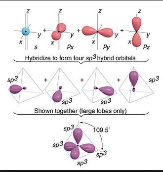 sp orbitals  9