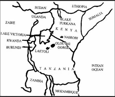 leakey africa
